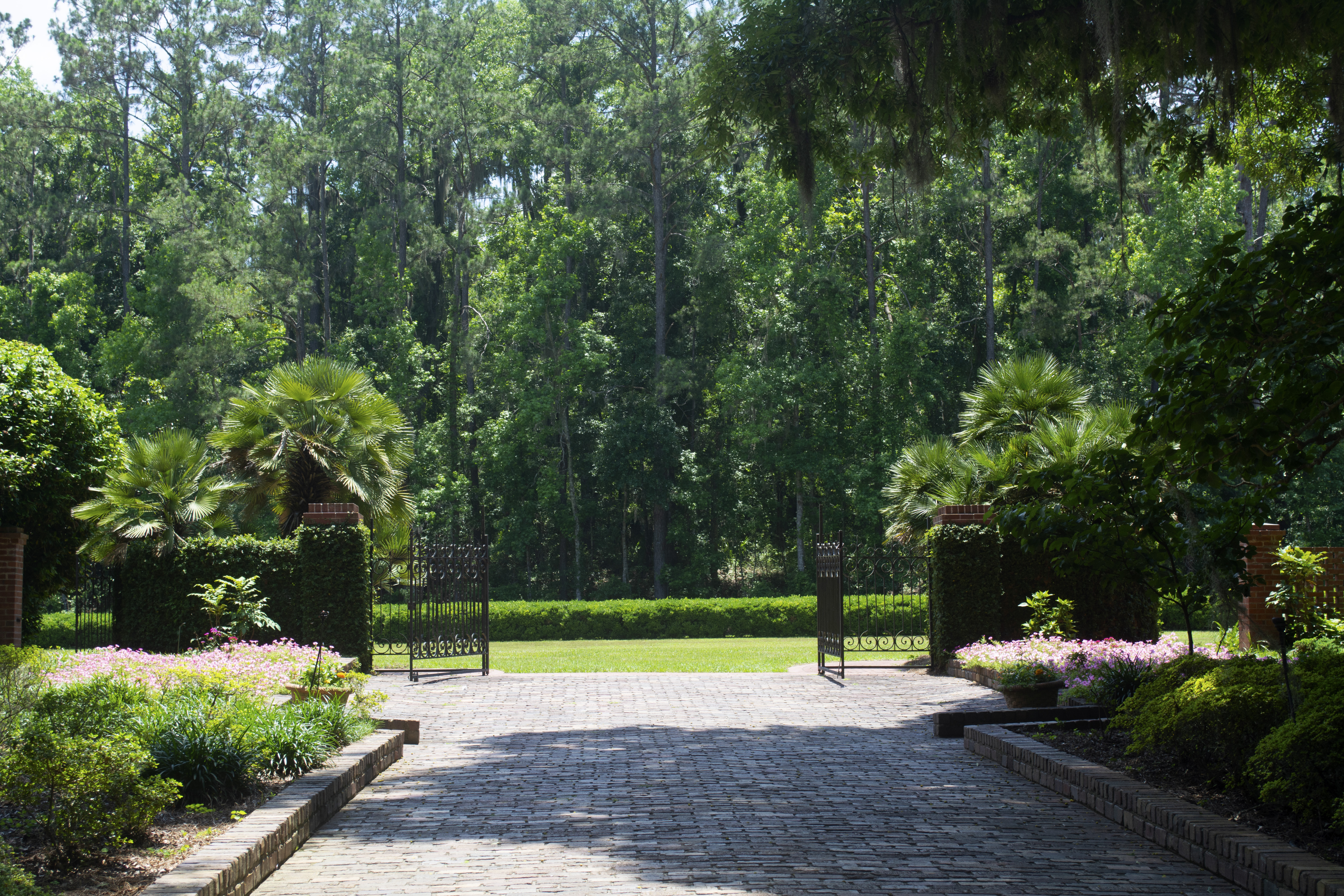 Walkway at Alfred B. McCabe Garden State Park in Tallahassee, FL